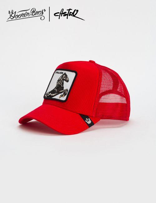 כובע מצחיה Goorin - Stallion
